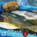 活魚 気仙沼 鮮魚セット[大]宮城県産 漁師直送 季節のおまかせお魚ボックス