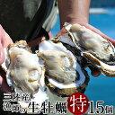 生牡蠣 殻付き 特大 夢牡蠣 15個 生食用 生ガキ 大粒生牡蠣 特大 バーベキュー【送料無料】