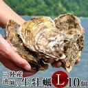 生牡蠣 殻付き L 10個 生食用 生ガキ 宮城県産 漁師直送 格安 生かき お取り寄せ バーベキュー