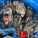 生牡蠣 殻付き L 15個 生食用 生ガキ 宮城県産 漁師直送 格安 生かき お取り寄せ バーベキュー
