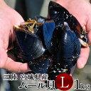 ムール貝 活ムール貝 [大 1kg] 殻付き 生ムール貝 三陸 朝どり 通販 人気 ランキング【送料無料】
