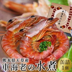 車海老 缶詰め 水煮[車エビ1個]クルマエビの本場 熊本県天草産 養殖場直送