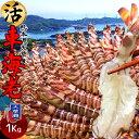 【新物予約販売】えび 車海老 活車えび 1kg(30-44尾)車エビ 生 クルマエビの本場 熊本県天草 養殖場直送 生き 活き車…