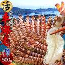 【新物予約販売】えび 車海老 活車えび 500g(15-22尾)車エビ 生 クルマエビの本場 熊本県天草 養殖場直送 生き 活き車海老 獲れたて新鮮 おすすめ人気通販 産直 高級ギフト【送料無料】