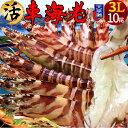えび 車海老 超特大【3L】ジャイアント 活車えび[10尾入]車エビ 生 クルマエビの本場 熊本県天草 養殖場直送 生き 活き車海老 獲れた…