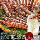 送料無料 車海老 活〆冷凍 天草 車えび 1kg 熊本県産 獲れたて 生き活き 養殖場直送