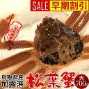 【早期割引特典】かに 松葉ガニ[大]700g 松葉蟹【解禁予約販売】活がに 鳥取県産 ブランドタグ付きマツバガニ 日本…