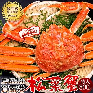 【新物スタート】かに 松葉ガニ[特大]800g 松葉蟹 ボイル ゆでがに 鳥取県産 ブランドタグ付きマツバガニ 日本海ズワイガニ【送料無料】