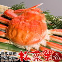 かに 松葉ガニ 訳あり[B大]700g 松葉蟹 ボイル ゆでがに 鳥取県産 足折れマツバガニ 日本海ズワイガニ