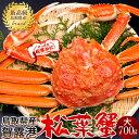 【解禁予約販売】かに 松葉ガニ[大]700g 松葉蟹 ボイル ゆでがに 鳥取県産 ブランドタグ付きマツバガニ 日本海ズワイガニ【送料無料】