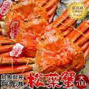 【新物スタート】かに 松葉ガニ[大]700g×3尾 松葉蟹 ボイル ゆでがに 鳥取県産 ブランドタグ付きマツバガニ 日本海ズワイガニ【送料無料】