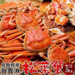 【新物スタート】かに 松葉ガニ セコガニ[メス大]3kg 松葉蟹 ボイル ゆでがに 鳥取県産 せこ蟹 セイコ蟹 マツバガニ 日本海ズワイガニ【送料無料】