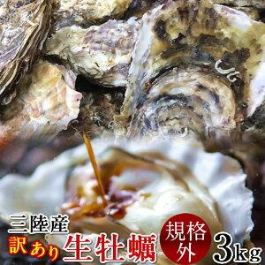 牡蠣 訳あり [規格外] 3kg 加熱用 殻付き牡蛎 漁師直送 カキ 生かき 三陸 宮城県産【送料無料】