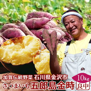 さつまいも 五郎島金時 10kg[良・中]訳あり 不揃い 石川県産 金沢市 加賀野菜 ブランド さつま芋 高級 生いも 加賀百万石 伝統 秋野菜【送料無料】