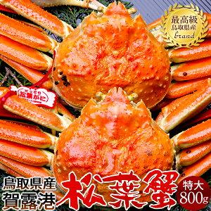 【新物スタート】かに 松葉ガニ[特大]800g×2尾 松葉蟹 ボイル ゆでがに 鳥取県産 ブランドタグ付きマツバガニ 日本海ズワイガニ【送料無料】