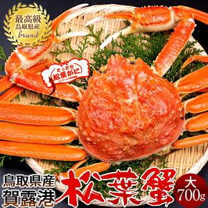 【初セリ解禁予約】かに 松葉ガニ[大]700g 松葉蟹 ボイル ゆでがに 鳥取県産 ブランドタグ付きマツバガニ 日本海ズワイガニ【送料無料】
