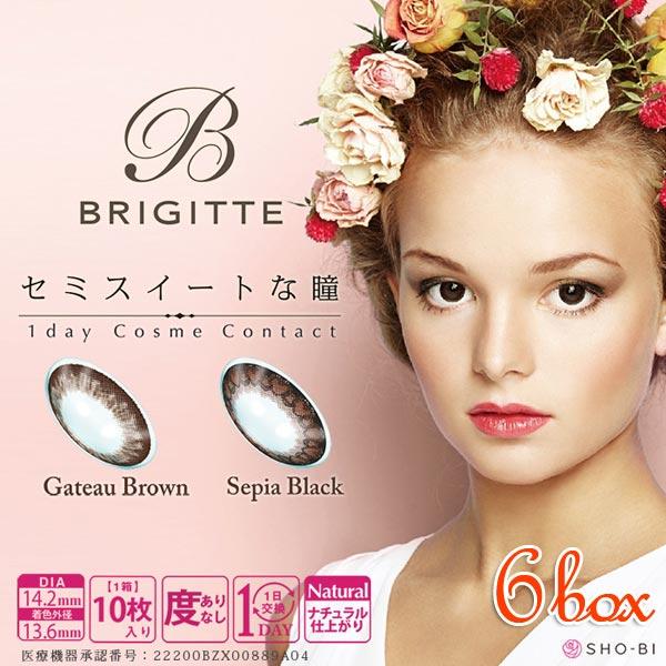 【送料無料】ブリジット BRIGITTE 6箱(1箱10枚入)ワンデー カラコン