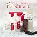 縮毛矯正 スタンダードセット スプレータイプ(縮毛矯正剤 80g×1セット 80g/前後処理剤セット スプレー/4点セット)
