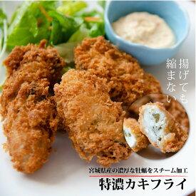 特濃 カキフライ 500g (250g×2P) 宮城県産 牡蠣 フライ かき 惣菜 お弁当 冷凍 国産 敬老の日