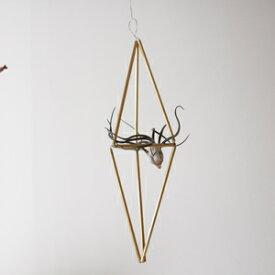 【手作りキット】真鍮のヒンメリ(縦長三角)とエアプランツ(Sサイズ)のオーナメント※作り方付