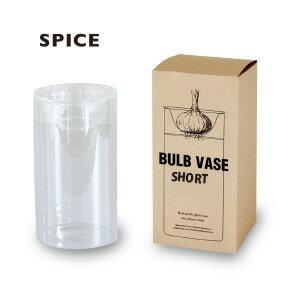 【送料無料(一部地域を除く)】水耕栽培用のガラスポット[SPICE] [多肉植物][サボテン][球根][球根用フラワーベース][BULB VASE]