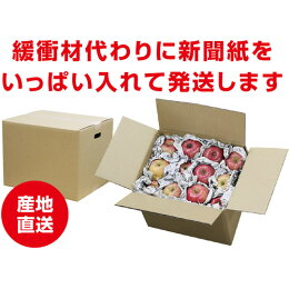 【送料無料】信州・長野県産訳ありサンふじりんご10kg産地直送おいしいリンゴ傷あり蜜入り大小様々
