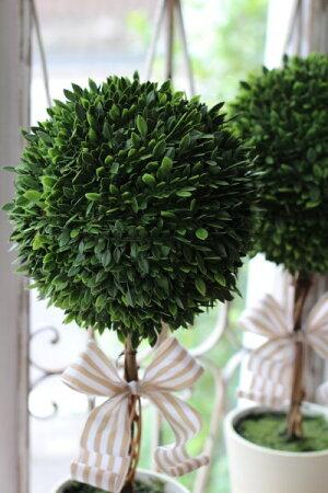 フランスリボン♪フレンチトピアリーLサイズオブジェ置物ツゲトピアリー造花