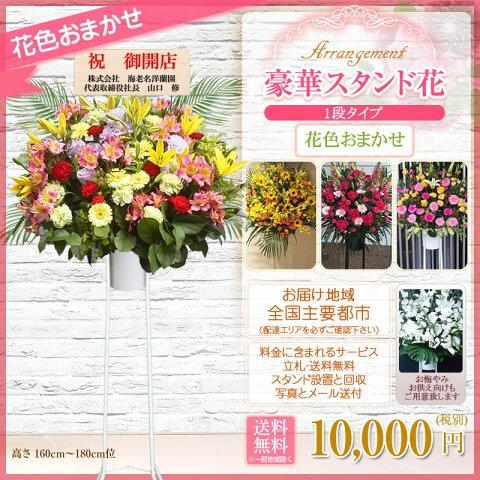 【スタンド花専門】海老名洋蘭園