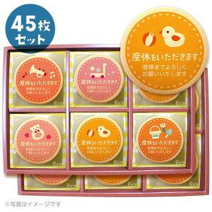 産休 お菓子 職場 あいさつに おもちゃA メッセージクッキー45枚セット 箱入り お礼 ギフト ショークッキー