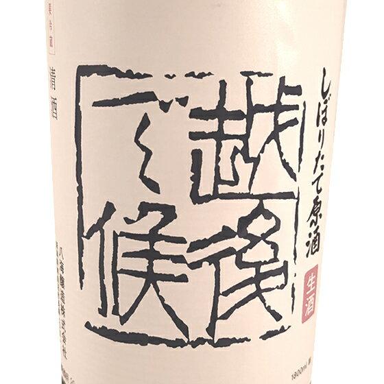 【お年賀 ギフト】八海山(はっかいさん) しぼりたて原酒「越後で候(えちごでそうろう)」青越後 1800ml 新潟県 八海山 日本酒 クール便