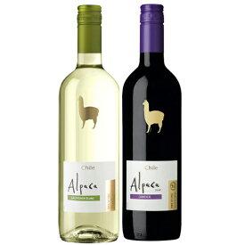 お酒 お歳暮 ギフト 極旨ワイン アルパカ ソーヴィニヨン・ブラン&カルメネール 赤白 ワインセット 750ml 2本 チリ 白ワイン 赤ワイン 送料無料 楽ギフ_のし 結婚祝い 内祝 お歳暮 プレゼント