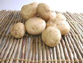 【西日本産、または北海道産】自然農法、または有機栽培 じゃがいも 約1kg