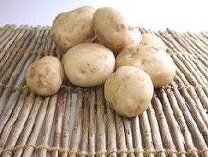 【西日本産、または北海道産、横浜産】自然農法、または有機栽培 じゃがいも 約1kg