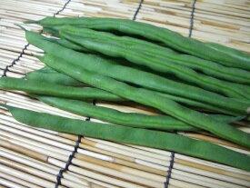 【西日本産(九州、沖縄、他)】自然農法、または特別栽培 いんげん 約90g