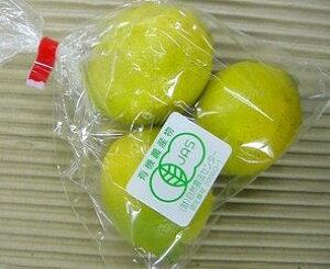 【西日本産(愛媛県産、他】有機栽培または自然農法レモン(国産)1袋(2個)(/有機 果物)※皮にキズ・シミ等あります。