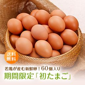 期間限定!若鶏が産んだ新鮮「初たまご60個入り」全国送料無料 赤玉 太陽卵 初卵 ういらん 妊娠 出産 縁起物 長寿祈願 初産み卵 贈り物 ギフト 母の日