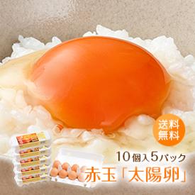 九州産赤玉「太陽卵(10個入り5パック)」家庭用 全国送料無料 小分け 朝採れ 長崎産 たまご タマゴ 玉子 生卵 鶏卵 新鮮 濃厚 採れたて 生みたて