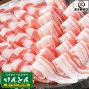 豚肉 バラしゃぶしゃぶ 500g けんとん豚 岐阜県 ばら 薄切り 鍋用 炒...