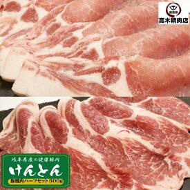 国産豚 焼肉セット 500g豚ロース 豚肩ロース 岐阜県 けんとん豚 BBQ 焼肉 バーベキュー