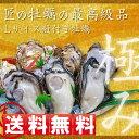 【送料無料】一粒殻付き牡蠣(L)50個入り(加熱用)【RCP】02P01Mar15