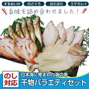 干物バラエティパック(のどぐろ60g×2枚・するめいか2枚・はたはた大5尾・エテカレイ大2枚×2(全て一夜干し)日本海に育まれた滋味いっぱいの海の幸のし対応 御中元 お中元 ギフト