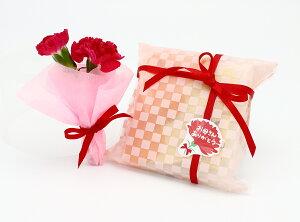 《母の日ギフト花スイーツ超プチプラセット》プチカーネーションと母の日クッキー2枚セット。【PPP】母の日カード付【速達メール便送料無料】