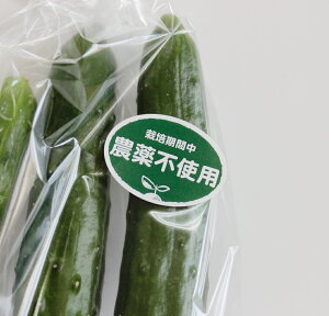 農薬不使用シール200枚(k-n02)1シート10枚×20シート入り(サイズ3.7×2.7cm)【メール便送料無料】