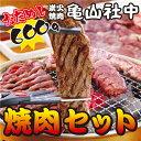【送料込み】亀山社中 おためし 焼肉セット(華咲きハラミ・やわらかカルビ合計600g) ⇒【あす楽】【RCP】(ギフト プレ…