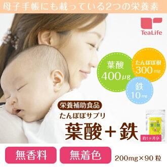 蒲公英营养品 叶酸+铁(200毫克×90粒)约1个月
