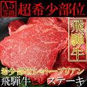 飛騨牛 シャトーブリアン A5等級 ヒレ ステーキ 希少部位 100g×5枚 冷蔵商品