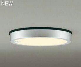 OG254818 オーデリック FLAT PLATE フラットプレート 人感センサ付 アウトドア軒下灯 [LED電球色][マットシルバー]