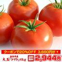 クーポン使用で20%OFF 大玉 トマト 4kg 福島県 いわき産 酸味と甘みのバランスが絶妙な新鮮トマト