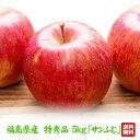 【予約注文】【特秀品】福島県産りんご ふじ サンふじ 5kg(13玉〜20玉) ご注文時期に合わせて最適な品種を出荷 送料無…