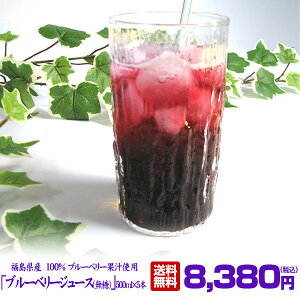 ブルーベリージュース(無糖) 500ml×5本入りセット ストレート 果汁100% 無糖 福島県産 ブルーベリー園みうら ストレート ブルーベリージュース 100%